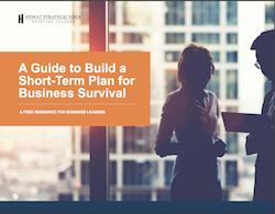 Hewat-Strategic-Short-Term-Plan-Business-Survival-cover