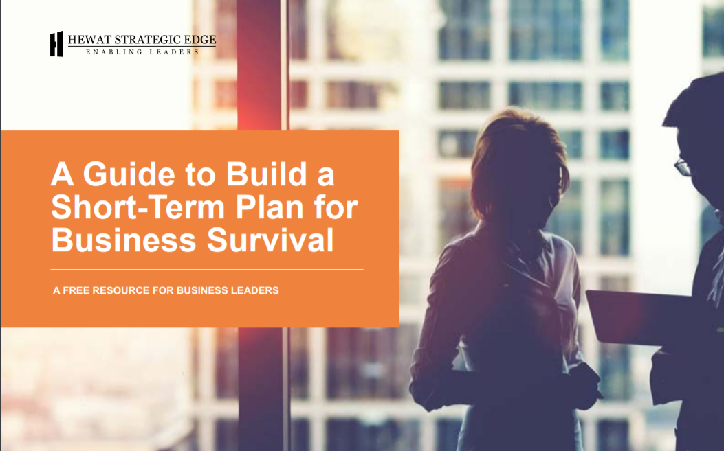 Seven Questions to Build a Short-Term Plan for Business Survival